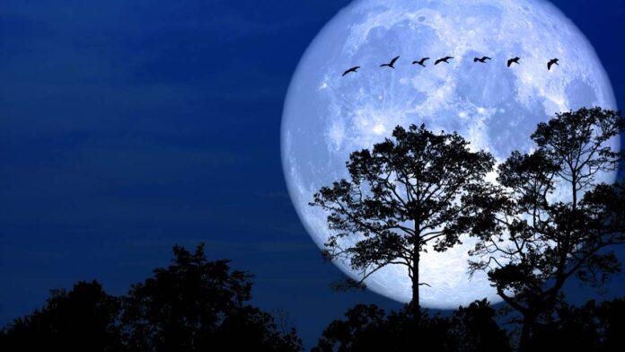 """Prepare-se para a """"Lua de Neve"""": o que significa, como e quando vê-la"""