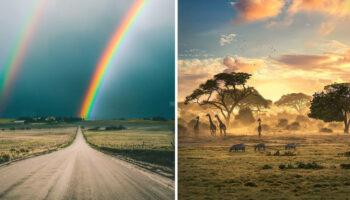 20 momentos em que a natureza se esforçou para nos surpreender