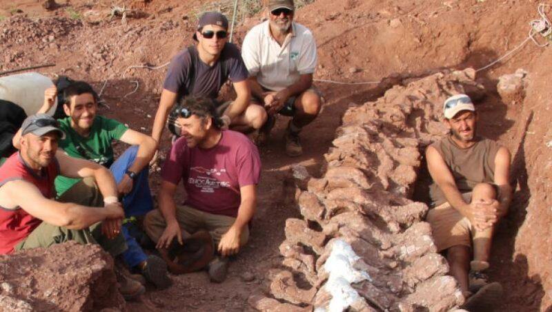 Descoberto dinossauro de 98 milhões de anos que pode ser o maior do mundo