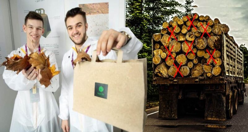 Estudantes criam papel de folhas caídas de árvores para evitar o desmatamento nas florestas