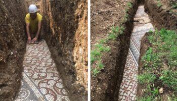 Antigo mosaico romano é descoberto em perfeito estado debaixo de um vinhedo na Itália