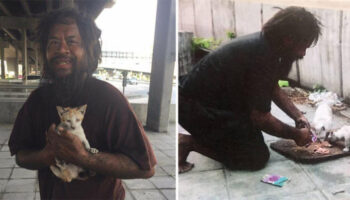 Morador de rua prefere ficar sem comida para alimentar gatos abandonados