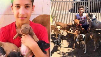 Adolescente abre abrigo único e já resgatou mais de 26 animais de rua