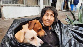 Mulher sem-teto dorme em um saco de lixo para ficar junto de seus seis cachorros