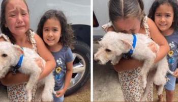 Menina não para de chorar lágrimas de alegria quando finalmente encontra seu cachorro perdido
