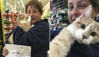 Gato resgatado está tão feliz por ser adotado que não para de abraçar sua mãe humana