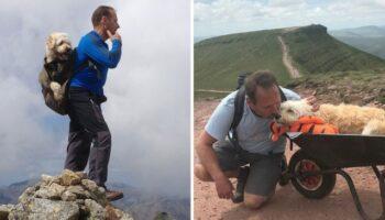 Homem leva seu cachorro com câncer para um último passeio pelas montanhas para se despedir dele