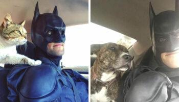 Este Batman da vida real está em uma missão para resgatar animais sem teto