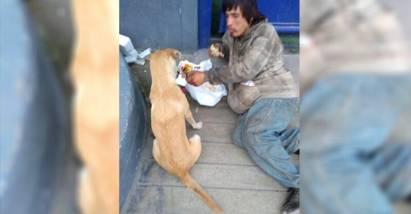 Morador de rua é visto compartilhando com seu cachorro a pouca comida que conseguiu