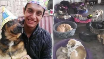 Edwin, o salvador que no leito de morte pediu ajuda para seus 80 cães e 40 gatos