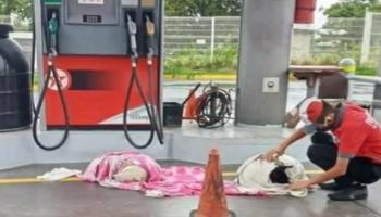 Trabalhador de posto de gasolina resgata dois cães que morriam de fome e frio