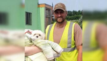 Motorista de caminhão de lixo encontra cachorrinho durante a coleta e salva sua vida