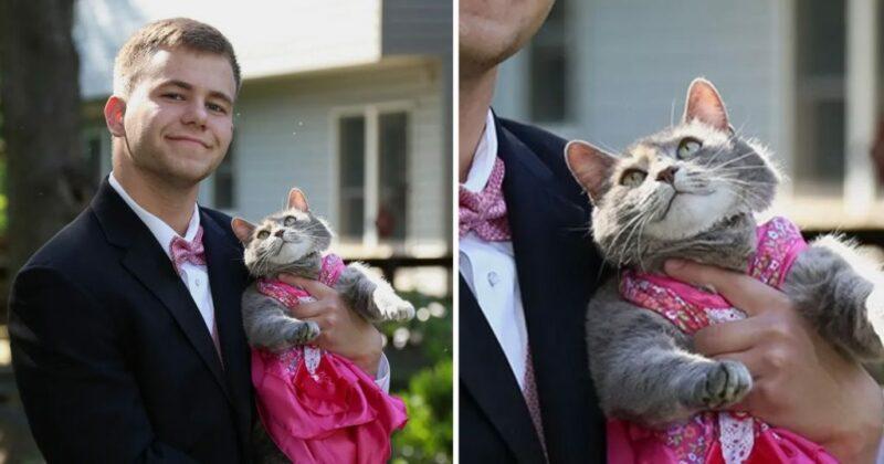Jovem não conseguiu encontrar par para o baile da escola, então ele levou a sua gatinha