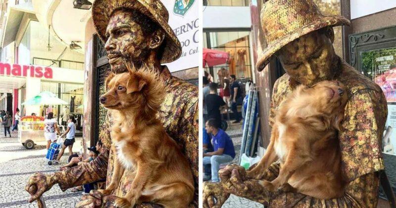 Cachorrinha ajuda seu pai humano, um artista de rua em sua rotina de estátua humana